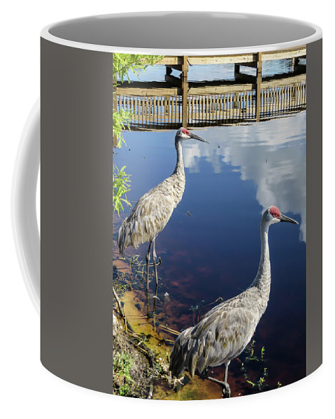 Birds Coffee Mug featuring the photograph Cranes At The Lake by Zina Stromberg