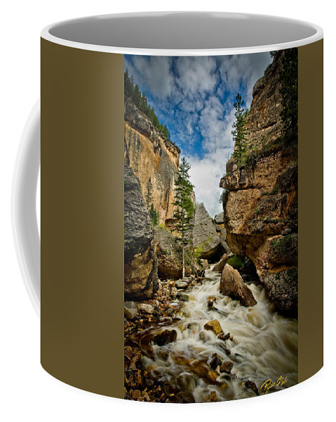 Canyon Coffee Mug featuring the photograph Crazy Woman Canyon by Rikk Flohr