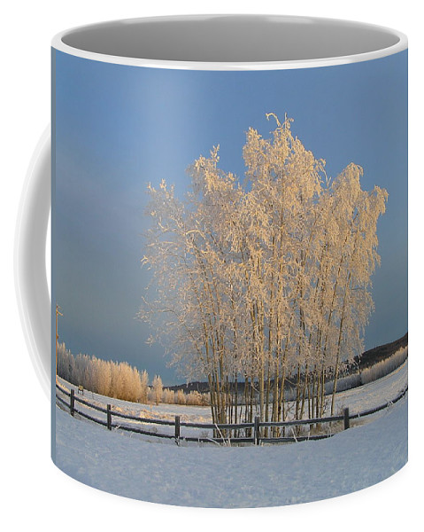 Snow Coffee Mug featuring the photograph Creamer Field by Louise Magno