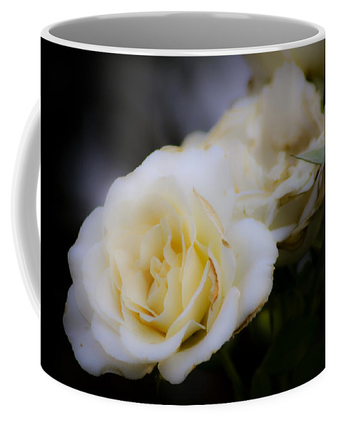 Rose Coffee Mug featuring the photograph Creamy Dreamy Rose by Teresa Mucha