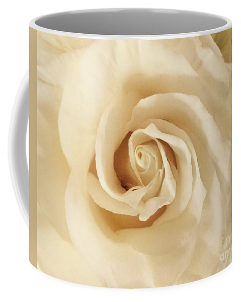 Rose Coffee Mug featuring the photograph Creamy Rose by Mary K Conaboy