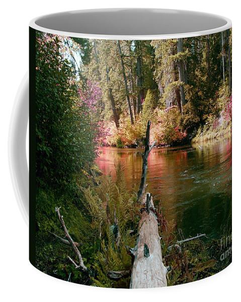 Fall Season Coffee Mug featuring the photograph Creek Fall by Peter Piatt