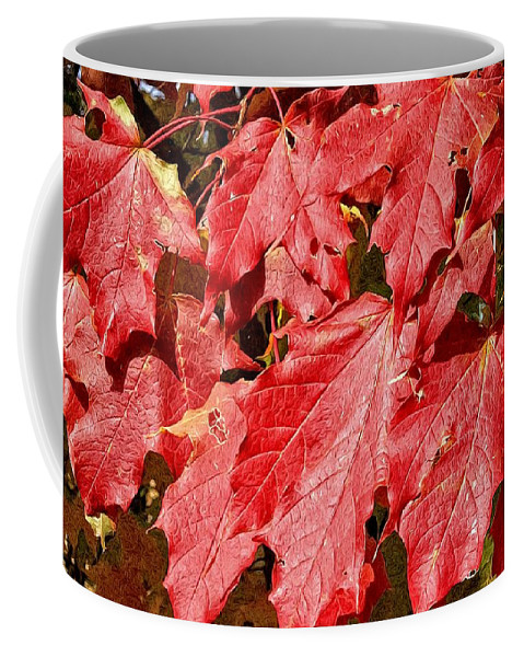 Alicegipsonphotographs Coffee Mug featuring the photograph Crimson Fall by Alice Gipson