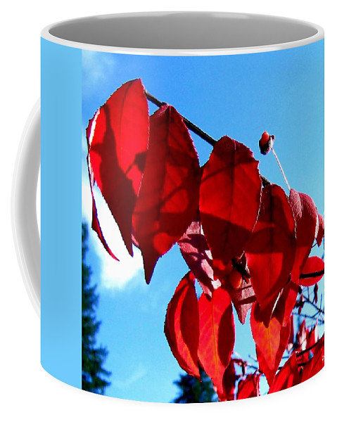 Autumn Coffee Mug featuring the photograph Crimson Hill by Will Borden