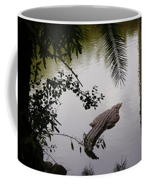 Croco Coffee Mug featuring the photograph Croco by Are Lund