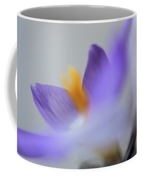 Flora Coffee Mug featuring the photograph Crocus In Vase 8 by Jill Greenaway