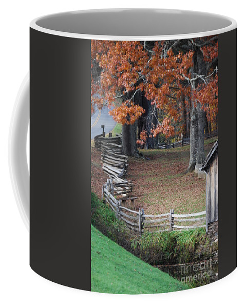 Archecture Coffee Mug featuring the photograph Crooked Fence by Eric Liller
