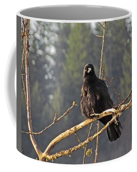 Nw Birds Coffee Mug featuring the digital art Crow Morning by I'ina Van Lawick