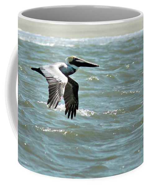 Brown Pelican Coffee Mug featuring the photograph Cruising by Phill Doherty