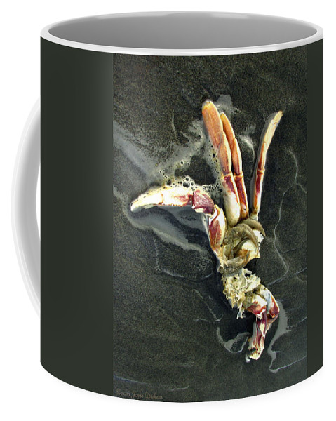 Crab Coffee Mug featuring the photograph Crustacean On The Shore by Joyce Dickens