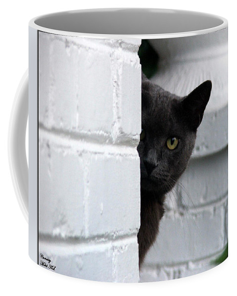 Cats Coffee Mug featuring the photograph Curiosity by Robert Meanor