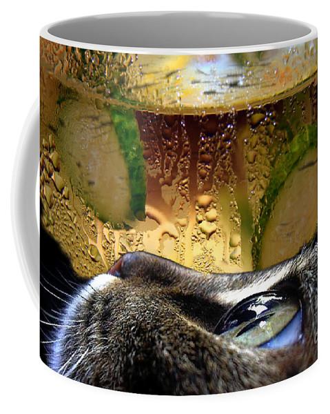 Cat Coffee Mug featuring the photograph Curious Cat.. by Jolanta Anna Karolska