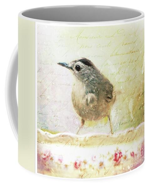 Catbird Coffee Mug featuring the photograph Curious Catbird by Tina LeCour