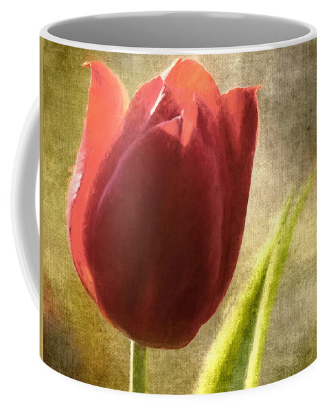Flowers Coffee Mug featuring the photograph Currently Vintage Xvii by Tina Baxter