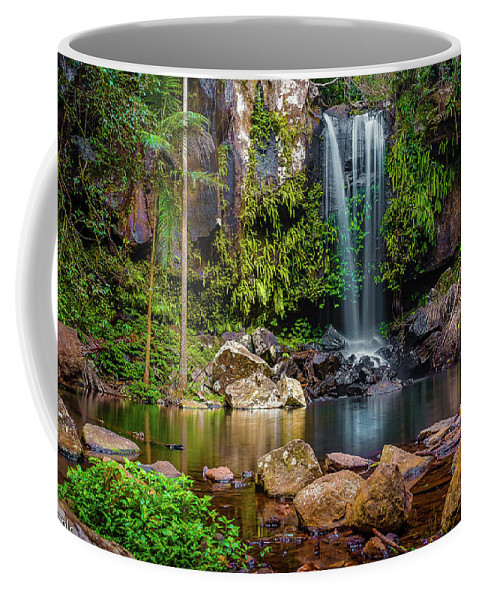 Trees Coffee Mug featuring the photograph Curtis Falls by Cameron Richardson