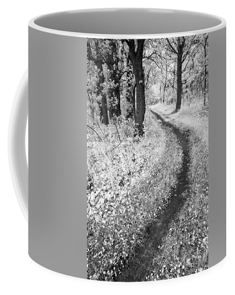 Black And White Coffee Mug featuring the photograph Curving Path Through Woods by Donald Erickson
