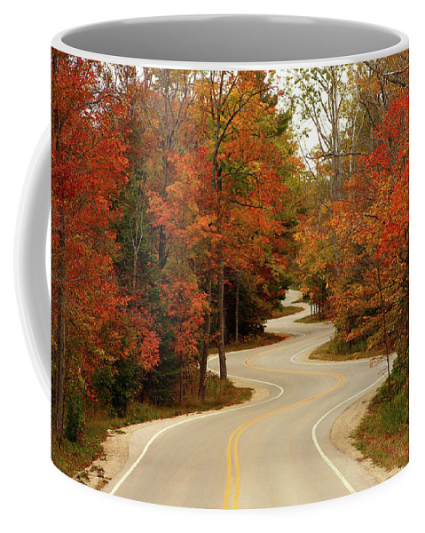 3scape Coffee Mug featuring the photograph Curvy Fall by Adam Romanowicz