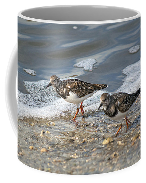 Sandpiper Coffee Mug featuring the photograph Cute Couple by Kenneth Albin