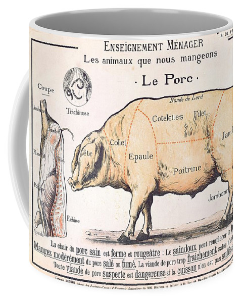 Eating;farm Animals; Cross Section; Loin; Rump; Flank; Butcher; Joint; Pig; Pigs; Shoulder; Ham; Belly; Shoulder; Diagram; Slaughter; Farming; Food Preparation; Domestic Science; Nutrition;teaching;education;home Economics; Farming; Breed;butchering Coffee Mug featuring the drawing Cuts Of Pork by French School