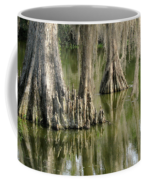 Nature Coffee Mug featuring the photograph Cypress Knees by Peg Urban