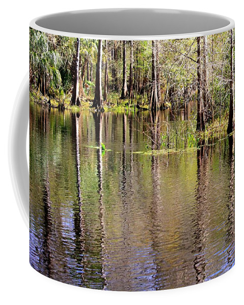 Cypress Trees Coffee Mug featuring the photograph Cypress Trees Along The Hillsborough River by Carol Groenen