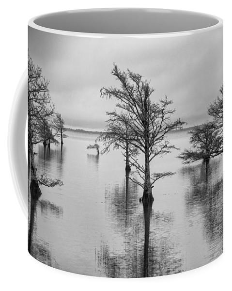 Cyprus Trees Coffee Mug featuring the photograph Cypress Trees In Lake Mattamuskeet North Carolina by Rande Cady