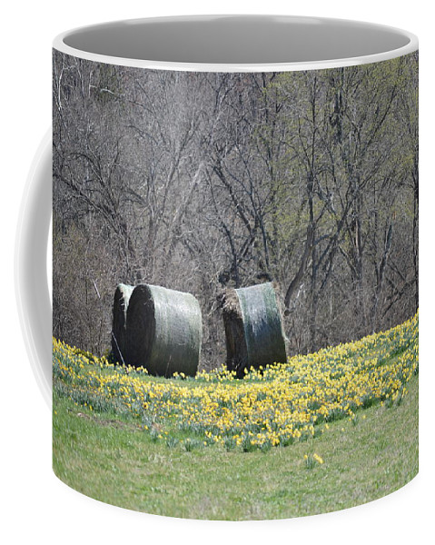 Spring Coffee Mug featuring the photograph Daffodil Bales by Cathy Christian