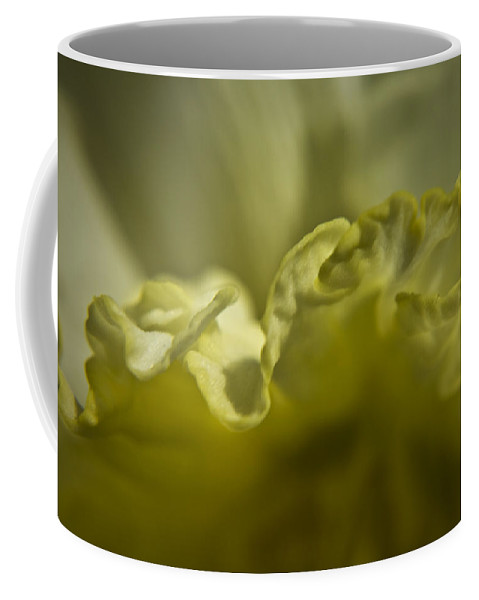 Flower Coffee Mug featuring the photograph Daffodil Ruffles by Teresa Mucha