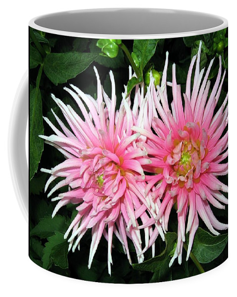 Dahlia Coffee Mug featuring the photograph Dahlia Duo by Will Borden