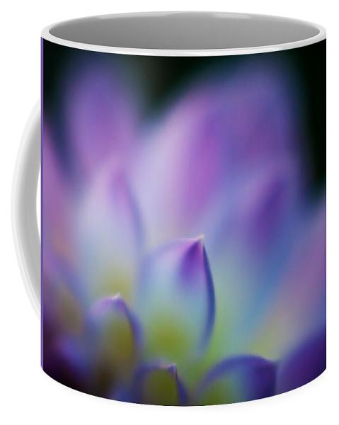 Dahlia Coffee Mug featuring the photograph Dahlia Heaven by Mike Reid