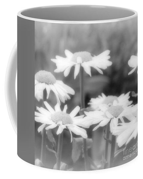 Daisy Coffee Mug featuring the photograph Daisy Daze by Amy Steeples
