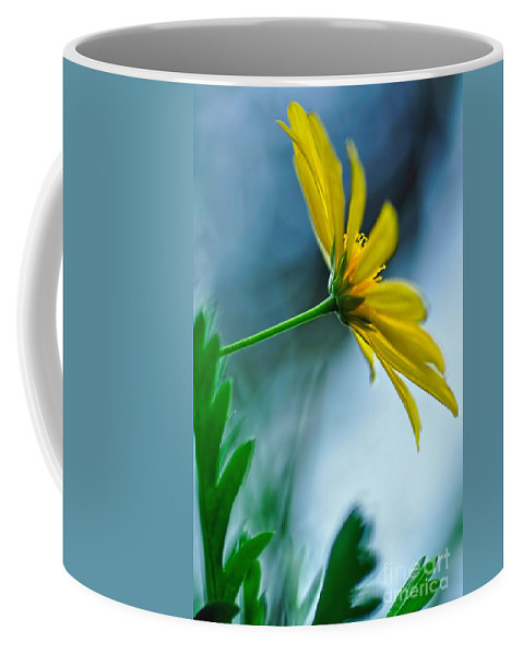 Photography Coffee Mug featuring the photograph Daisy In The Breeze by Kaye Menner