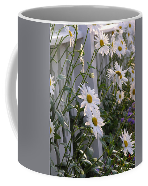 Daisy Coffee Mug featuring the photograph Daisy's Escaping by Diane Greco-Lesser