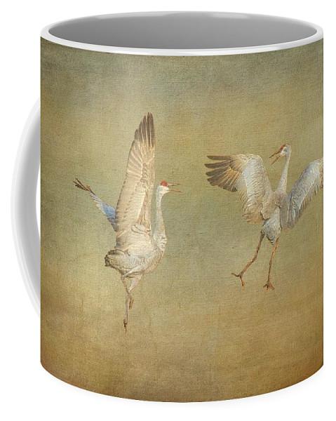 Nature Coffee Mug featuring the photograph Dance Ritual II, Sandhill Cranes by Zayne Diamond Photographic