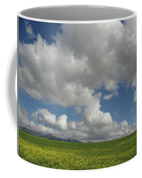 Mustard Coffee Mug featuring the photograph Dances With Mustard by Shannon Grissom