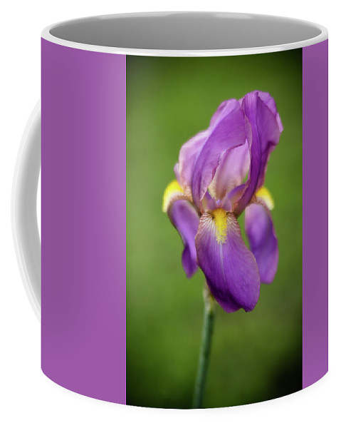 Flower Coffee Mug featuring the photograph Dancing by Aliza Anderson