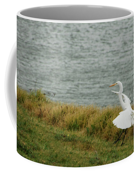 Egret Coffee Mug featuring the photograph Dancing Egret by Donna Blackhall