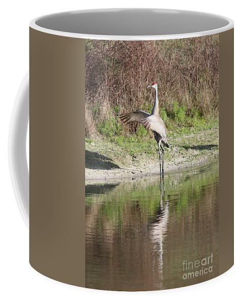 Bird Coffee Mug featuring the photograph Dancing On The Pond by Carol Groenen