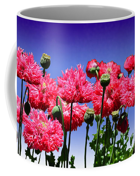 Dancing Coffee Mug featuring the photograph Dancing Poppies by Terry Anderson