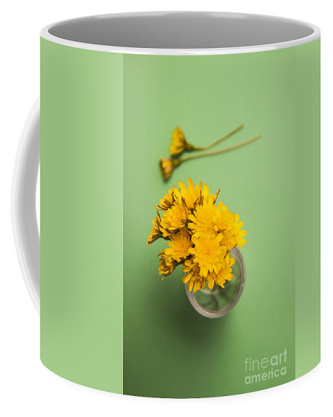 Flower Coffee Mug featuring the photograph Dandelion Flower Clippings by Jorgo Photography - Wall Art Gallery