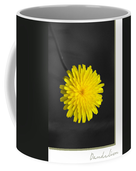 Floral Coffee Mug featuring the photograph Dandelion by Holly Kempe