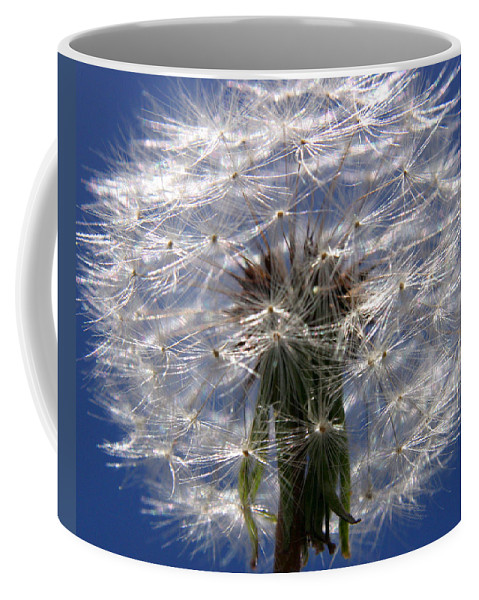 Dandelion Coffee Mug featuring the photograph Dandelion by Ralph A Ledergerber-Photography