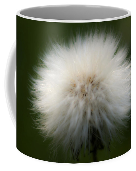 Bloom Coffee Mug featuring the photograph Dandelion by Svetlana Sewell