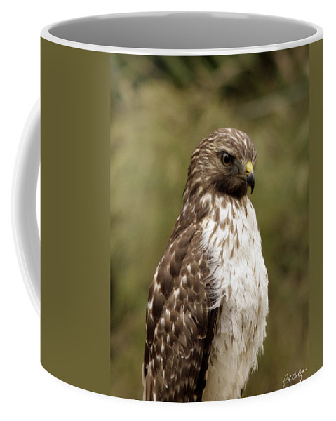Bird Coffee Mug featuring the photograph Dark Beauty by Phill Doherty