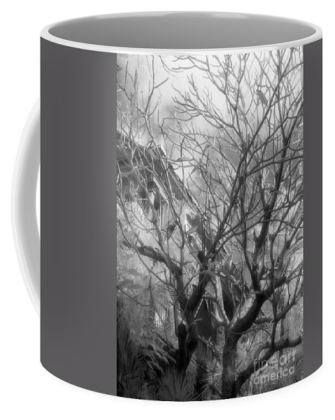 Infrared Photography Coffee Mug featuring the photograph Day Dream by Richard Rizzo
