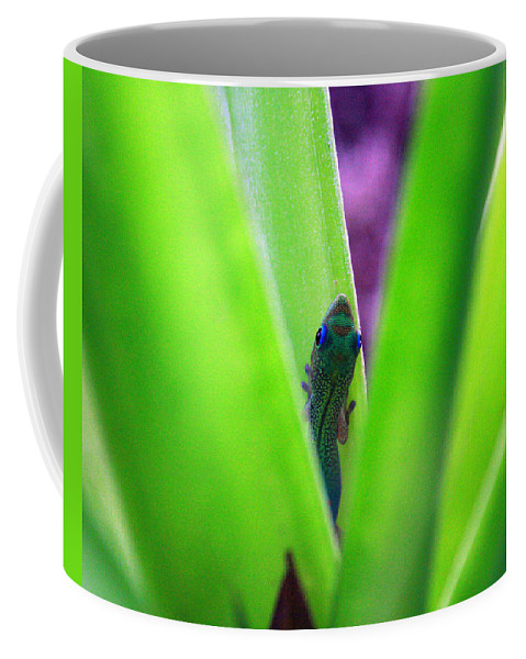 Gecko Coffee Mug featuring the photograph Day Gecko and Pineapple Plant by Jennifer Bright