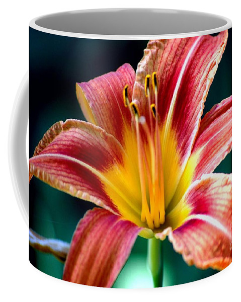 Landscape Coffee Mug featuring the photograph Day Lilly by David Lane