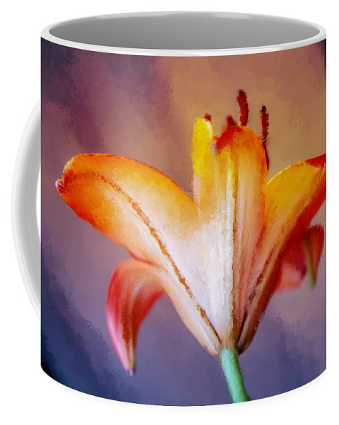 Photography Coffee Mug featuring the digital art Day Lily Back by Terry Davis