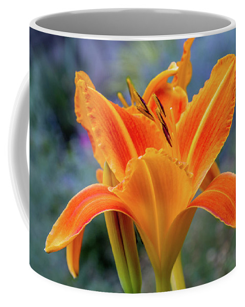 Photography Coffee Mug featuring the photograph Day Lily Bright by Terry Davis