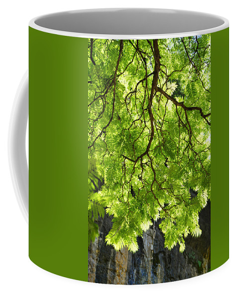 Skiphunt Coffee Mug featuring the photograph Daydream by Skip Hunt
